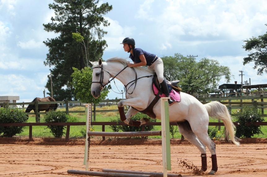Laura Ferratone saltando com cavalo hipismo