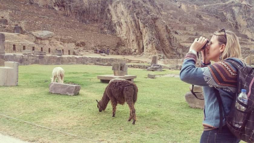 Patrícia Matiello com a lhamas no Chile
