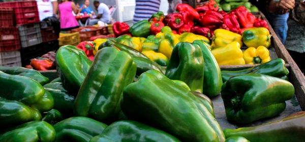 Feira livre em Bauru as cores de verduras e legumes
